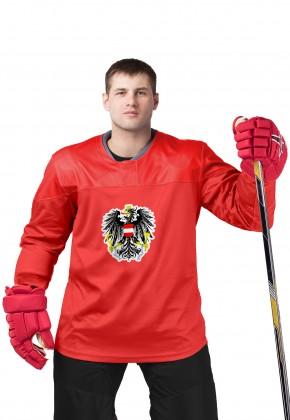 Хоккейный свитер (тренировочный)